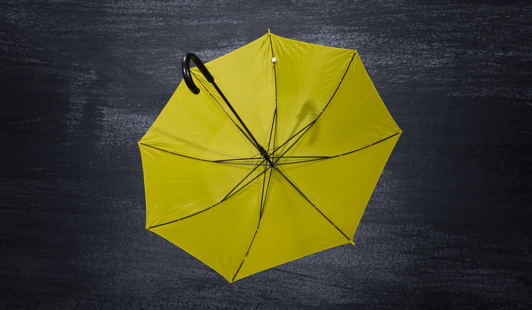 DMEC Umbrella
