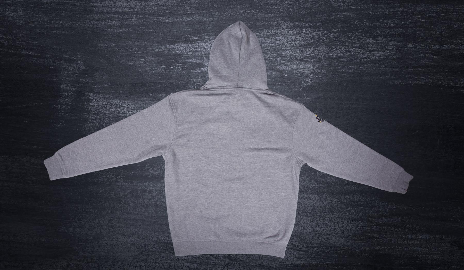 Poland Plock Stadium Hooded sweatshirt grey